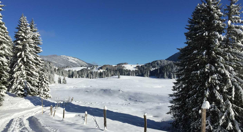 Refuge Haute Savoie Notre Dame Des Neiges Plateau Des Glieres